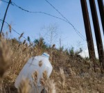 borderfence_plasticbottle